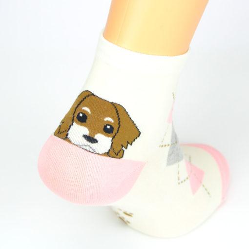 Socken Hund Foxhound
